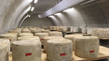Gilles Manhes peut stocker 250 fromages dans sa cave d'affinage. / © Lydie Ribes / France 3 Auvergne