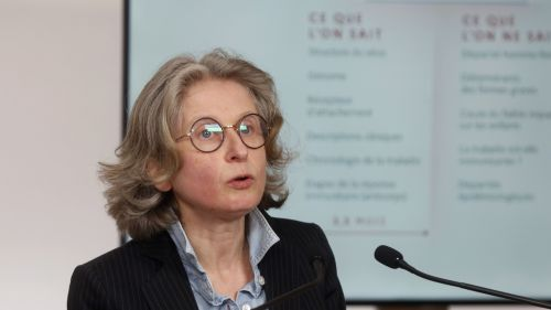 Coronavirus : l'infectiologue Florence Ader, discrète scientifique aux commandes de l'essai clinique Discovery à Lyon