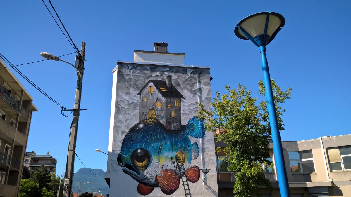 "Photo d'illustration ""Street art fest"" de Grenoble en 2017 / © Damien Borelly/France 3 Alpes"