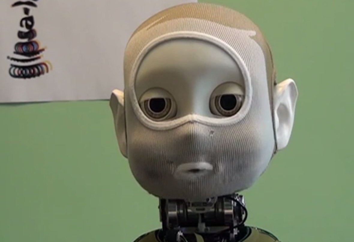 Nina, le robot du Gipsa-Lab / © Youtube Gipsa-Lab