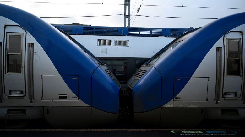 Des trains TER en gare (photo d'illustration) / © Damien MEYER / AFP