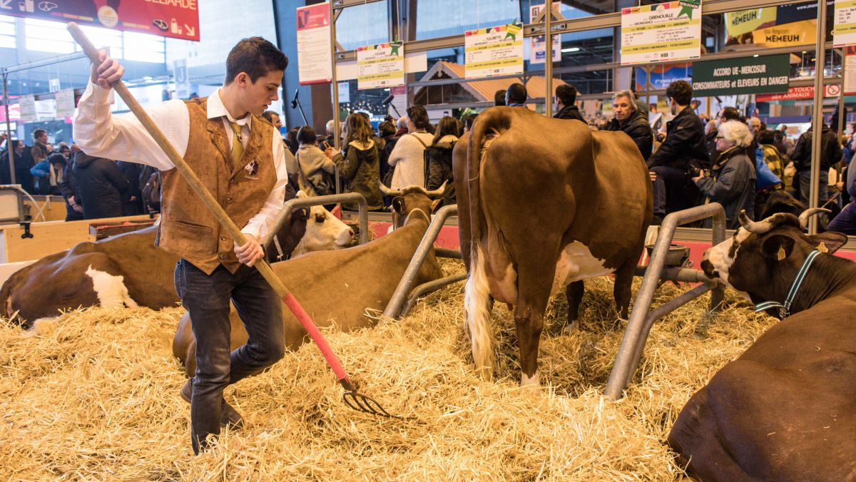 DIRECT. SIA 2018 : le Salon International de l'Agriculture de Paris comme si vous y étiez