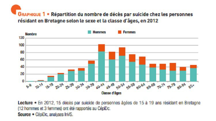 actualit s remise du 2 eme rapport de l observatoire national du suicide. Black Bedroom Furniture Sets. Home Design Ideas