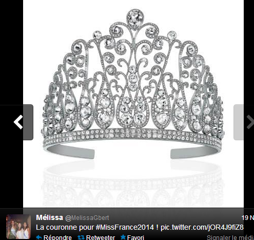 Qui portera la couronne de Miss France 2014 ?