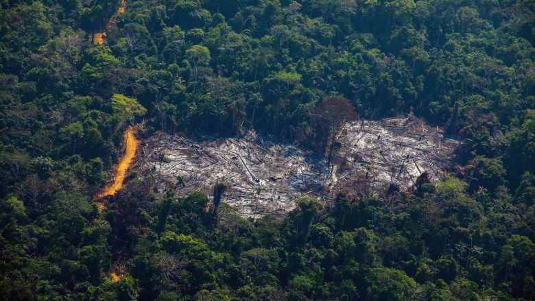 Aerial view of deforestation in the territory of the Menkragnoti, a people native to the State of Pará. / © Joao LAET / AFP