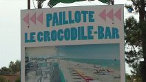 paillote crocodile bar
