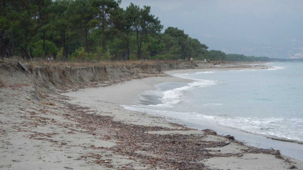 Inchiesta – Erosion du littoral, l'homme coupable et victime