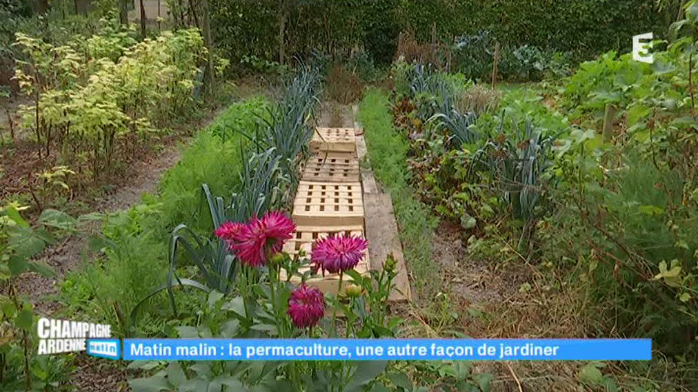 Champagne-Ardenne matin - La permaculture