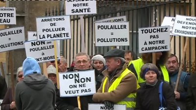Saint-Morel (Ardennes) : manifestation contre l'implantation d'un poulailler