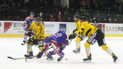 Hockey : les Scorpions de Mulhouse s'inclinent en 8e de finale de la Coupe de France