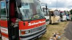 130 Setra de collection exposés à Betschdorf