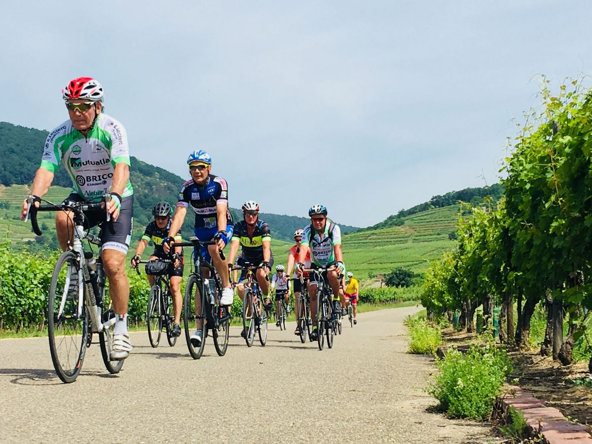 Le Tour de France progressera le long de la route des vins. / © France 3 Alsace