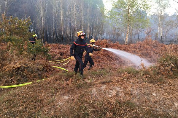 Incendie feu de forêt - Cercoux (17)