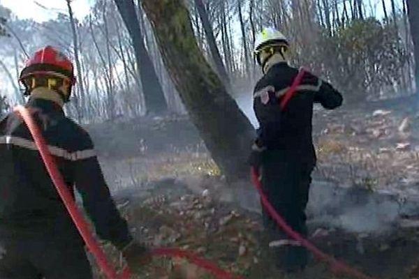Aujargues (Gard) - les pompiers luttent contre un incendie de forêt - 13 mai 2014.