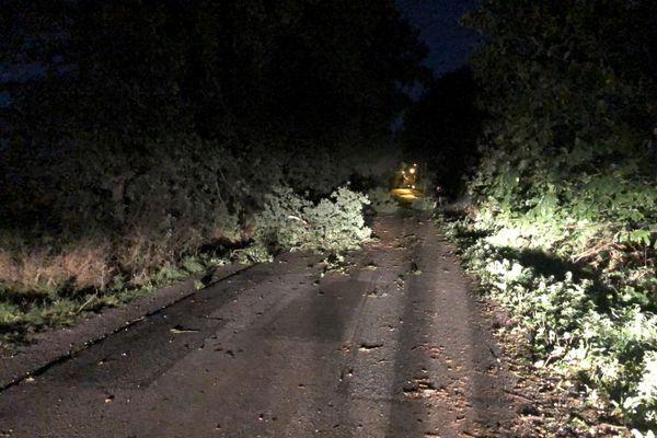 Les routes rendues dangereuses avec de nombreuses chutes d'arbres en Bretagne