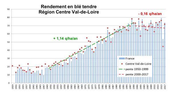 L'évolution du rendement en blé tendre en France et en Centre-Val de Loire