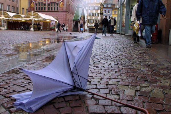 Des vents violents sont annoncés en Alsace ce dimanche 10 février.
