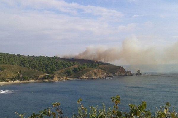 Le feu s'est déclaré sur une crête en bordure de mer. Banyuls le 24 septembre 2014.
