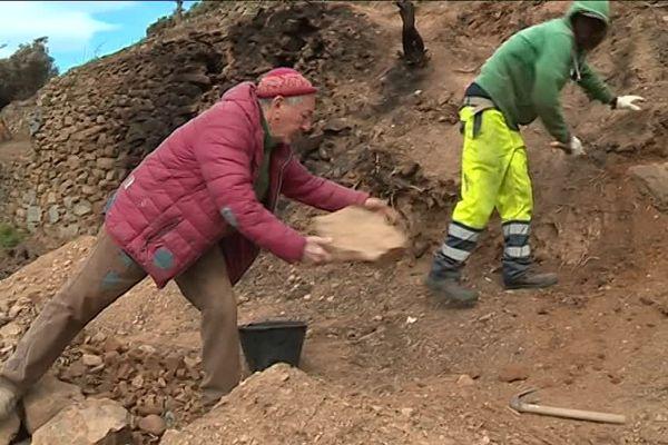 Première étape pour la sauvegarde des terres agricole des Cinque Terre :  la reconstruction des murs en terre sèche