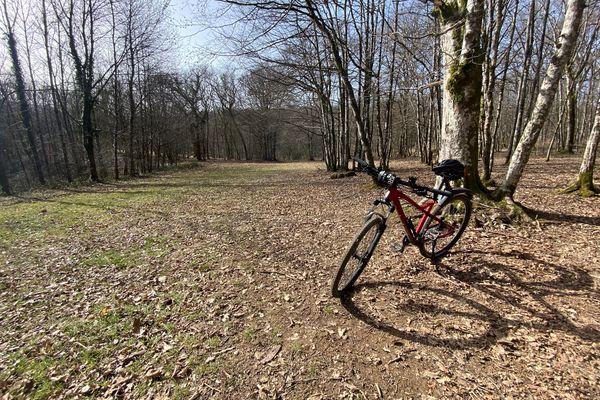 La forêt de Chailluz, près de Besançon, est très agréable en VTT.