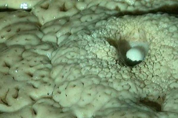 La formation d'une perle des cavernes est un phénomène naturel très rare