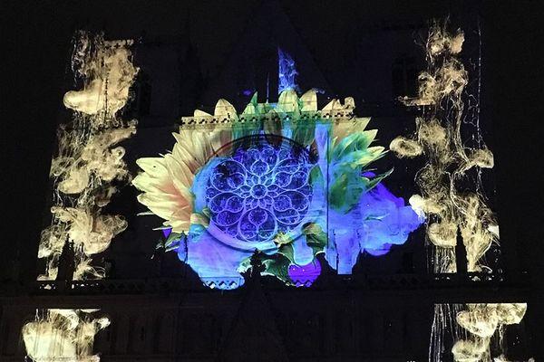Fête des lumières 2018 - Cathédrale saint-Jean / Pigments de lumière - OCUBO