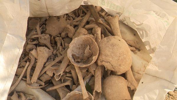 Les ossements humains retrouvés dans le jardin d'Antoine Emo en 2020 à Bassens (Aude).