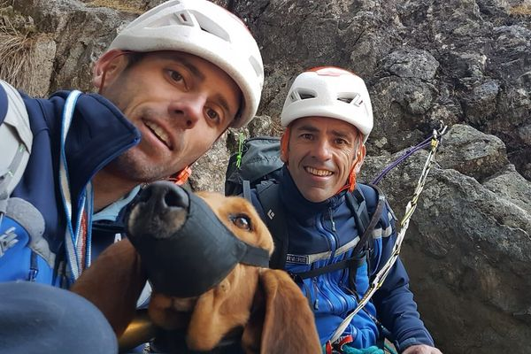 Le chien est resté bloqué deux jours à 2600m d'altitude.