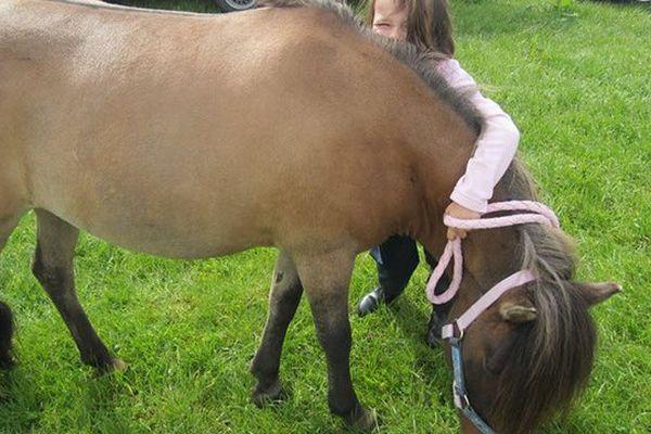 5 disciplines au programme de ce grand rassemblement des enfants et des poneys dans la Manche à Saint Lô.