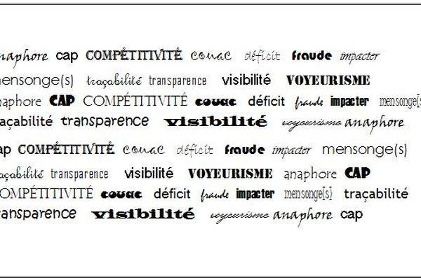 """Les 13 mots proposés pour être le """"mot de l'année 2013"""""""