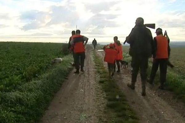 La chasse en plaine en Picardie