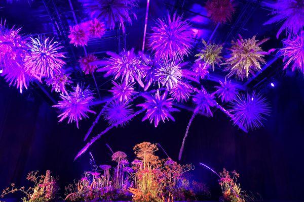 """C'est un véritable show floral qu'offrent fleuristes et spécialistes des espaces verts lors de Folie Flore. Ici, le """"feu d'artifices de fleurs"""" proposé par Régis Blanrue, mélange de fleurs coupées, de vidéos et de sons."""