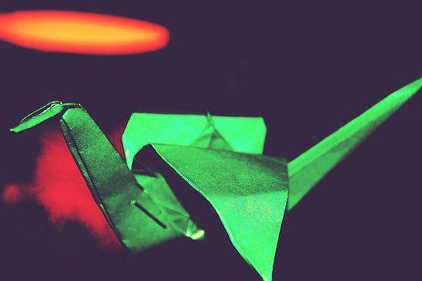 Un avion en papier champion du monde.
