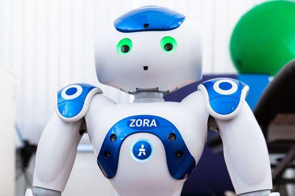 Ce petit robot est de plus en plus utilisé dans les établissements pour personnes âgées dépendantes. Il joue au loto. Il anime des séances de Gym. Il est d'humeur égale. Pourvu que sa batterie soit chargée...
