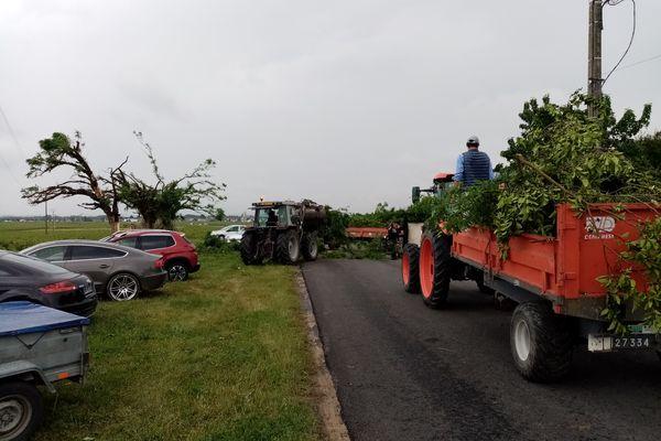 Déblaiement des arbres suite à la tornade.