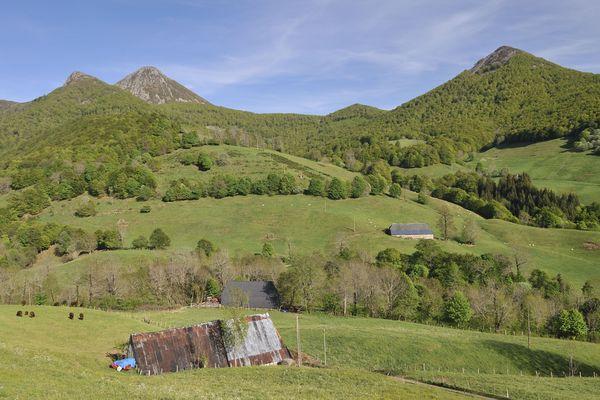 Le dénivelé et la nature préservée... C'est ce que vient chercher l'équipe de France de trail lorsqu'elle s'entraîne dans le Cantal.