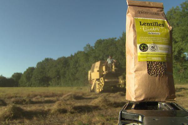 Le seul producteur de lentilles jaunes d'Occitanie se trouve en Aveyron. Il vient de commencer sa récolte, un peu plus tôt que prévu, obligé de s'adapter aux caprices de la météo.