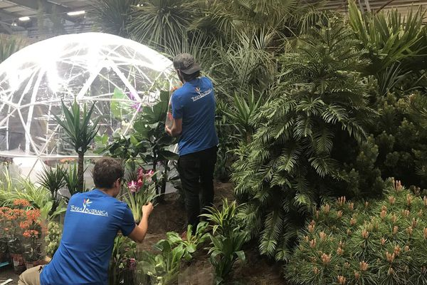 Les équipes de Terra Botanica préparent les prochaines Floralies internationales au Parc des expositions de la Beaujoire