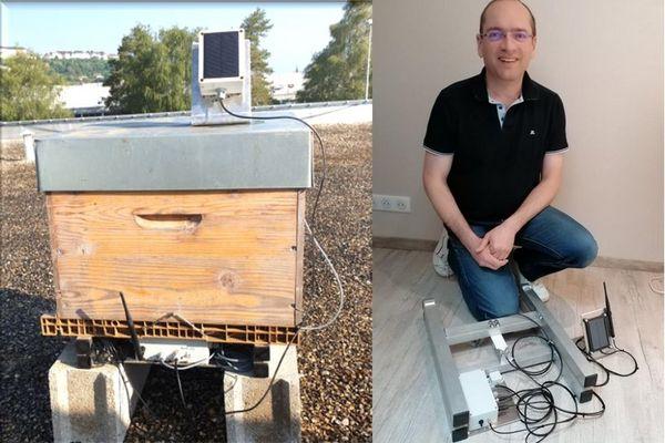 Le dispositif fonctionne grâce à un panneau solaire placé sur le toit de la ruche.