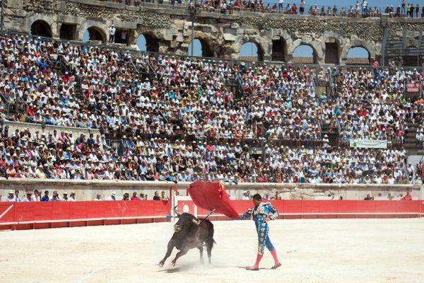 Archive : Jose Maria Manzanares dans les arènes de Nîmes le 8 juin 2014.