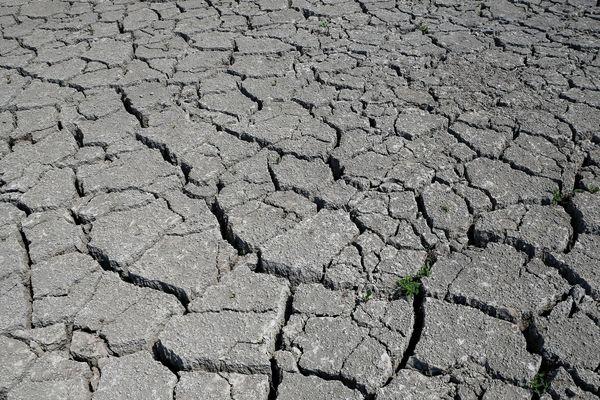 Quelque 16 communes du Puy-de-Dôme bénéficient d'une reconnaissance de l'état de catastrophe naturelle suite à la sécheresse de 2018.