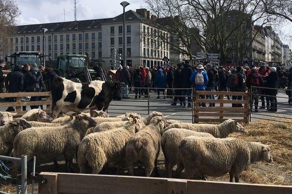 Manifestation devant le préfecture de Nantes contre le comité de pilotage sur l'avenir de la Zad de Notre-Dame-des-Landes