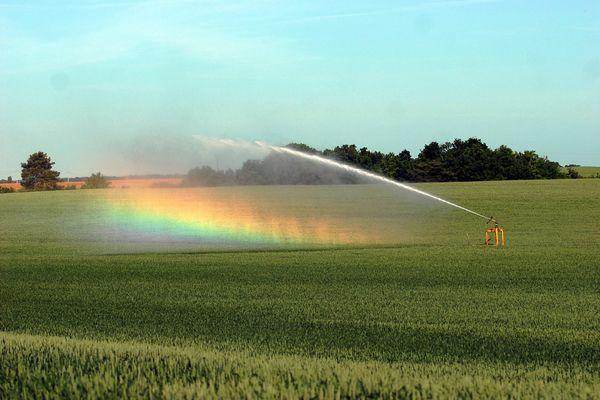 L'irrigation dans un champ forme un arc-en-ciel - Photo d'illustration