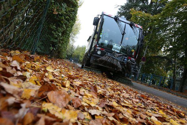 Le ramassage des feuilles mortes a débuté il y a une semaine à Paris.