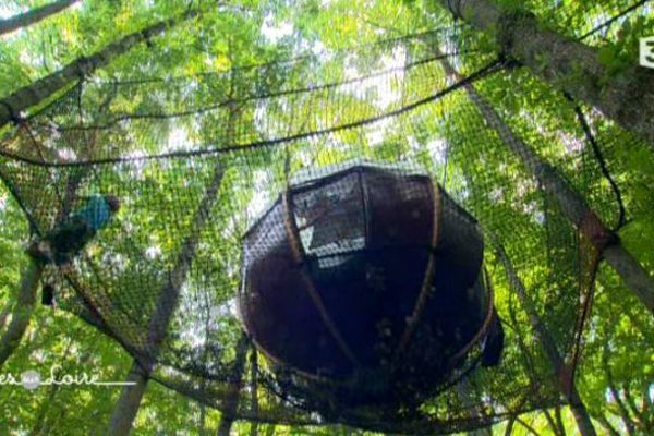 Les nids : des bulles suspendues à la cime des arbres à Fondettes en Indre-et-Loire.