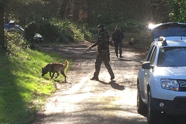 Depuis la mi-journée, le chemin d'accès à la forêt de Retz, à Saint-Pierre-Aigle, est bouclé par les gendarmes