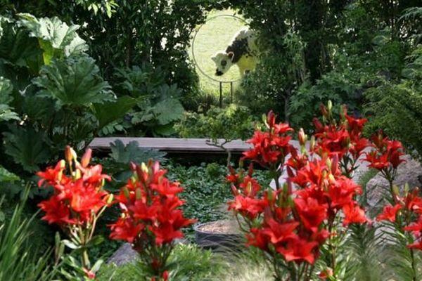 Membre du réseau Suisse Normande Territoire Préservé: le jardin intérieur à ciel ouvert d'Athis de l'Orne