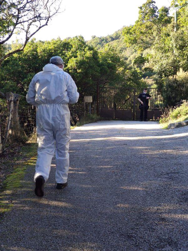 Le parquet d'Ajaccio a ouvert une enquête de flagrance pour homicide. Les investigations sont confiées à la sections de recherches de la gendarmerie.