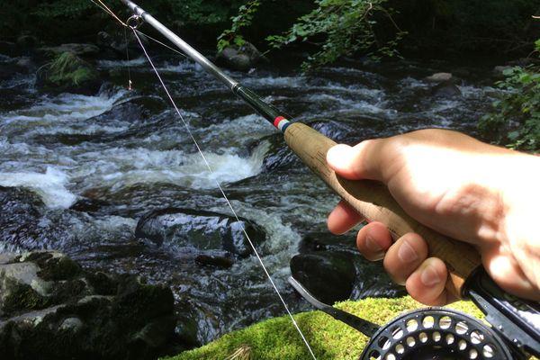 Avec ses lacs et ses rivières, le Puy-de-Dôme est une destination propice pour pêcher à la mouche. Quelques gardes-pêche proposent des cours d'initiation.