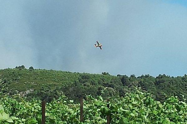 Fleury-d'Aude - 1er feu de l'été dans l'Aude - 25 juin 2013.